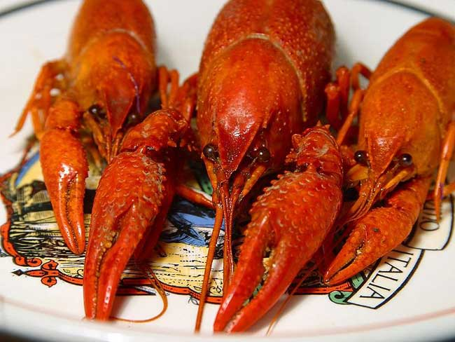 Crayfish: Wiki facts for this cookery ingredient