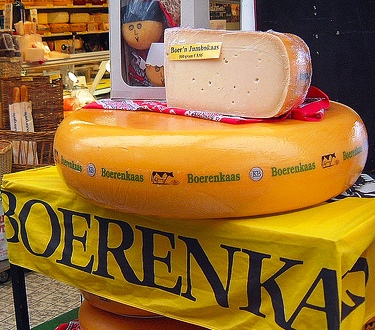 Wiki Information And Photos Of Boerenkaas Cheese