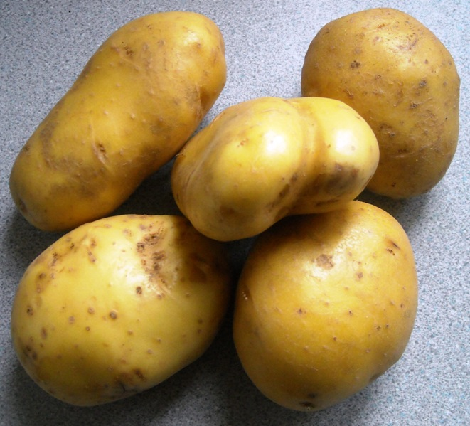 Marfona potato recipes