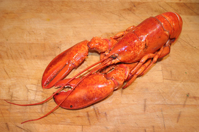 Lobster: Wiki facts for this cookery ingredient