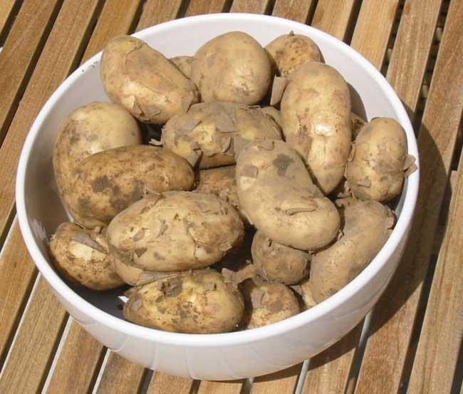New potatoes a vegetarian recipe - New potatoes recipes treat ...