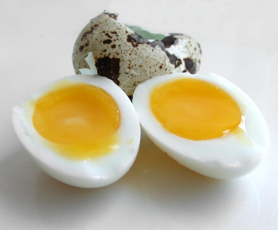 soft boiled quails 39 eggs egg recipe
