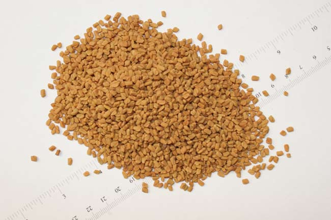 Fenugreek Wiki Facts For This Cookery Ingredient