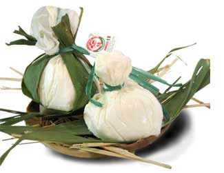 Wiki information and photos of Burrata cheese