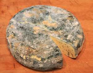 Home-made Gorgonzola cheese