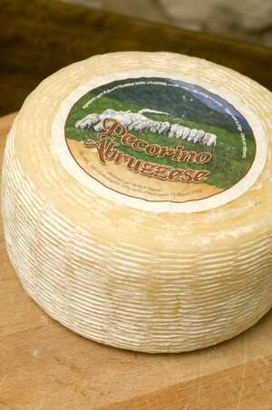 Pecorino Abruzzese Cheese Suppliers Pictures Product Info