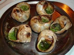 Snails cooking wiki - Cuisiner les escargots de bourgogne ...