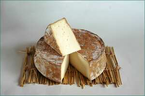 Saint Paulin Fermier Cheese Suppliers Pictures Product Info